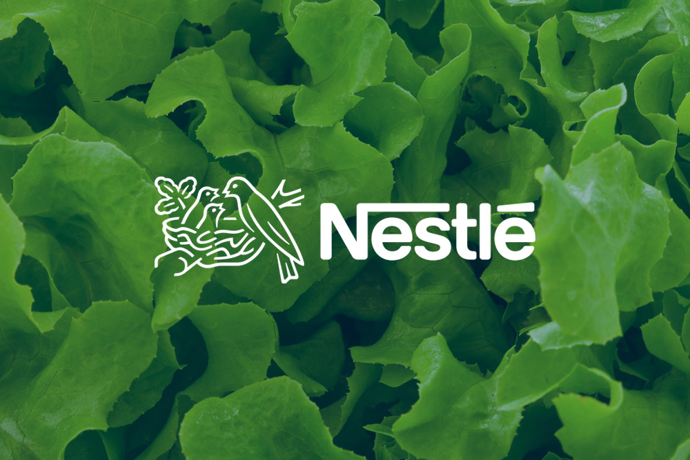 case study of nestle about benchmarking Case study on nestle home all posts case  some practices that nestle uses are mentioned in the case study are the literacy training wherein they give special.